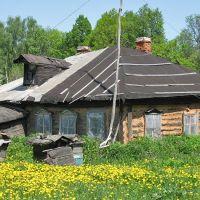 House of beekeeper. Пасека, Заокский