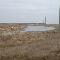 Карасиный пруд., Казановка