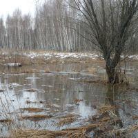 Панорамка., Казановка
