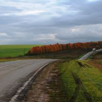 Куликово поле 3, Казановка