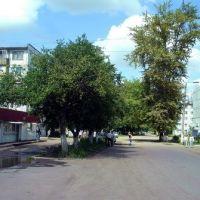 Ул.Павлова, Кимовск