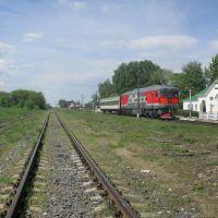 Самый последний поезд, Куркино