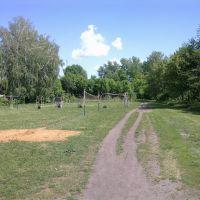 Школьная спортплощадка в Куркино, Куркино