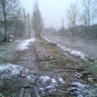 21 апреля 2005 г., 12:54=п.Ленинский ул.Центральная, вид на Север, Ленинский