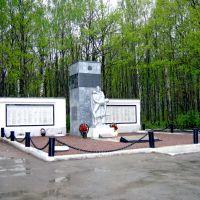 Памятник павшим в Великой Отечественной войне, Ленинский