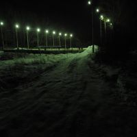 08.01.2011.коньки,зима..., Ленинский