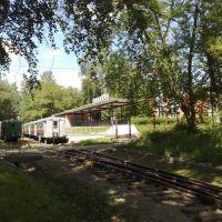 Novomoskovsk Childish railway...., Новомосковск
