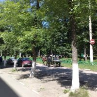 Novomoskovsk Transport of the Future, Новомосковск