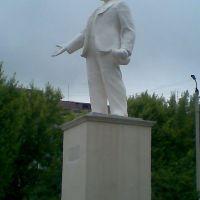 Дедушка Ленин, Новомосковск