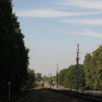 Недействующая линия на станцию Московская и полотно ДЖД, Новомосковск