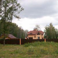 Дома у леса, Новомосковск
