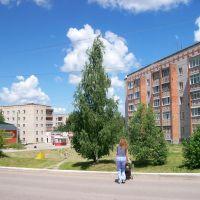 Суворов. На улице Тульской, Суворов