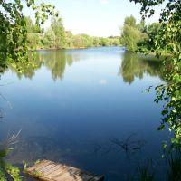 Озеро Старина, Щекино