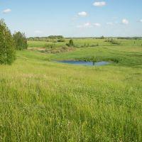 Большие Озерки, Щекино