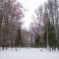 Бывший фонтан в парке, Щекино