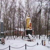 Памятник воинам, Щекино