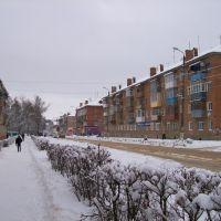 Улица Ленина, Щекино