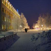 Муравленко зимнее утро 2011-12, Муравленко