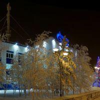 Муравленко январь 2013, Муравленко