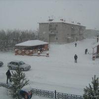 Зима в Абатске, Абатский