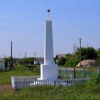 Памятник, Бердюжье