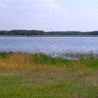 Западное озеро, Бердюжье