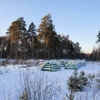 Татарское кладбище {Tatarischer Friedhof}, Большое Сорокино