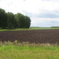 Чернозёмы, Большое Сорокино