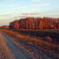 To home...., Большое Сорокино