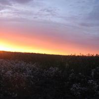 Рассвет над трассой., Большое Сорокино