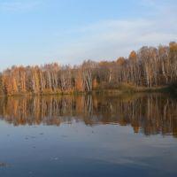 Голдобино Осень на Лукше 01, Большое Сорокино
