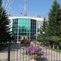 Белый дом, Викулово