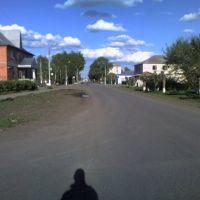 Улица садовая, Голышманово
