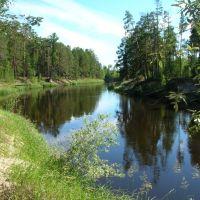 Река Пим, Заводопетровский