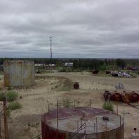 пб-Лосевая.Р-101, Заводопетровский