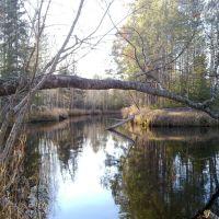 Заколдованная речка (Минчимкина), Заводопетровский