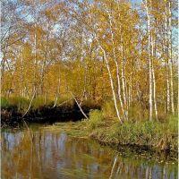 Осенний карнавал, Заводопетровский