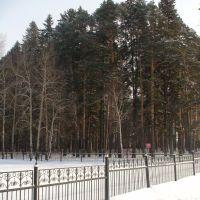 Колмаковский парк, Заводоуковск