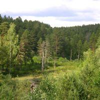 Залив 2, Заводоуковск