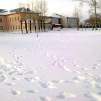 Первая школа, Исетское