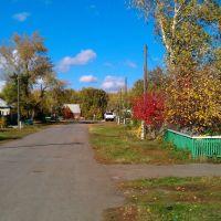 Улица Путилова в красках осени, Казанское