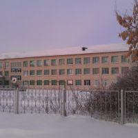 Казанская школа, Казанское