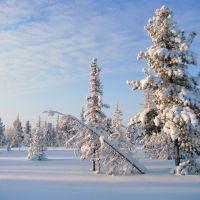 Siberia Jamal region, Красноселькуп