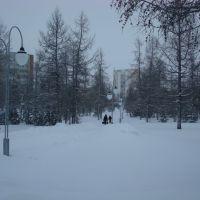 парк Зимой, Надым