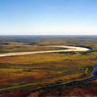 Бассен реки Мессояха., Находка