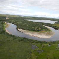 р. Салекаптан (Salekaptan River), Находка