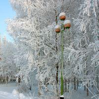 *** Зимний сюжет ***, Нижневартовск