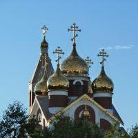 золотые купола, Ноябрьск