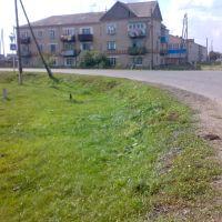 Рабочая-Ленина 2009, Сладково