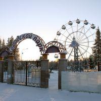 Городской парк (30.01.2011), Советский